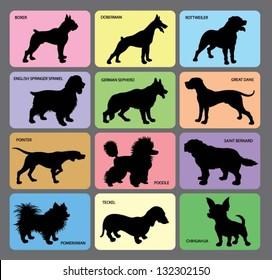 Dog Silhouettes 1. Various dogs card design with its names. Smooth and detail vector.