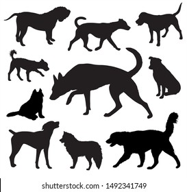 Dog  Silhouettes vector set graphic design isolated on white
