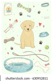 Dog stuff and supply .Color vector illustration