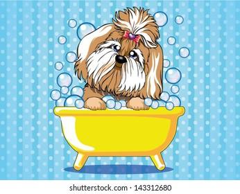 dog takes a bath in the bathtub