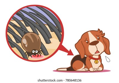 Dog tick sitting on skin under fur cartoon vector illustration character bug isolated animal closeup