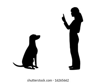 Dog training (obedience): command sit, dog sits