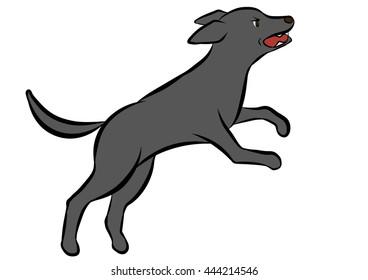 dog training poses