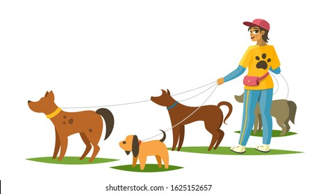 Dog walker with dogs isolated from background, vector illustration