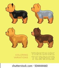 Dog Yorkshire Terrier Coloring Variations Vector Illustration