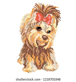 Dog yorkshire terrier drawn by squares, pixels. Vector illustration
