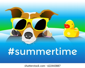 Dog-and-Duck-in-swimming-balloon-Summer-time