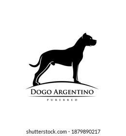 Dogo Argentino - dog breed - isolated vector illustration