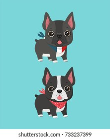Dogs of breed French Bulldog. Puppies of black and gray color.