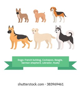 Dogs breed set, french bulldog cockapoo beagle german shepherd labrador husky. Kids vector illustration, pattern. Comic cartoon characters. Beige, orange, brown, black and white Pets. Pedigree dogs.