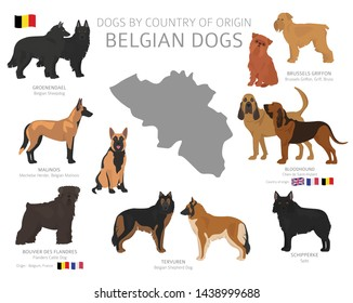 Dogs by country of origin. Belgian dog breeds. Shepherds, hunting, herding, toy, working and service dogs  set.  Vector illustration