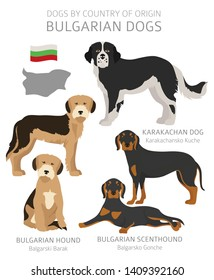 Dogs by country of origin. Bulgarian dog breeds. Shepherds, hunting, herding, toy, working and service dogs  set.  Vector illustration