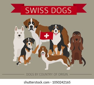 Dogs by country of origin. Swiss dog breeds. Infographic template. Vector illustration