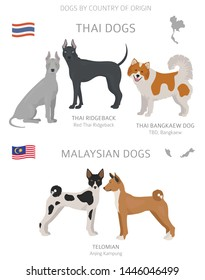 Dogs by country of origin. Thai and Malaysian dog breeds. Shepherds, hunting, herding, toy, working and service dogs  set.  Vector illustration