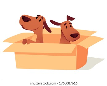 Dogs in cardboard box waiting for owner, adoption concept. Homeless cute puppies searching new home. Animals sitting in carton. Help sad pets to find friend cartoon vector illustration