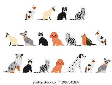 dogs and cats border set