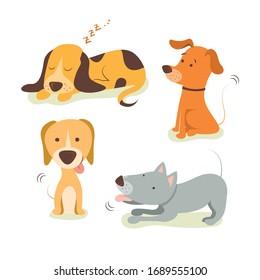 Collection de chiens. Illustration vectorielle de drôles de dessins animés différentes races de chiens dans un style plat tendance.