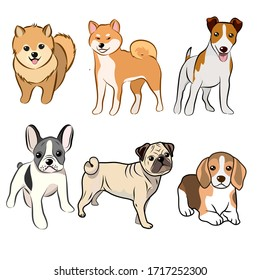Dogs collection, Vector illustration of funny cartoon different breeds dogs in trendy flat style. Isolated on white.