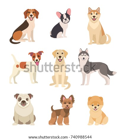 Dogs collection Vector illustration