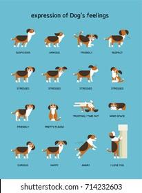 dogs emotion expression vector illustration flat design