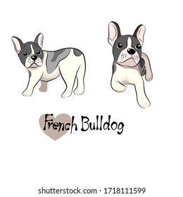 Dogs of French Bulldog Collection in Vector illustration of Pets in trendy flat style. Isolated on white.