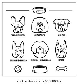 Dogs portrait with their things draw in minimal style