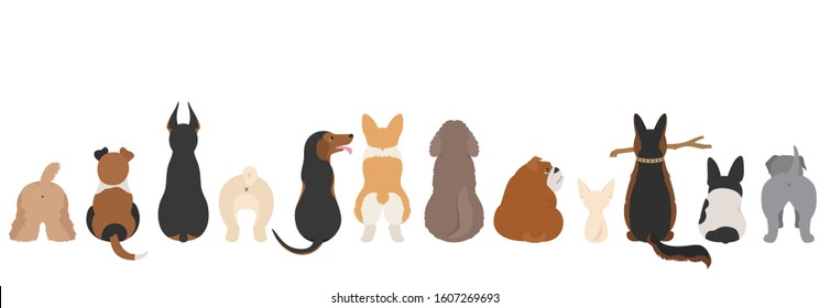 Dogs poses behind. Dog`s butts. Flat design border. Vector illustration
