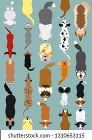 dogs seamless pattern background