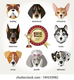 Dogs set icon head muzzles breed dogs bulldog dachshund husky chihuahua dalmatian doberman terrier poodle