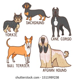 Dogs Set. Isolated Dog Collection in Doodle Style for Fliers Ads Banners Posters. Vector Illustration