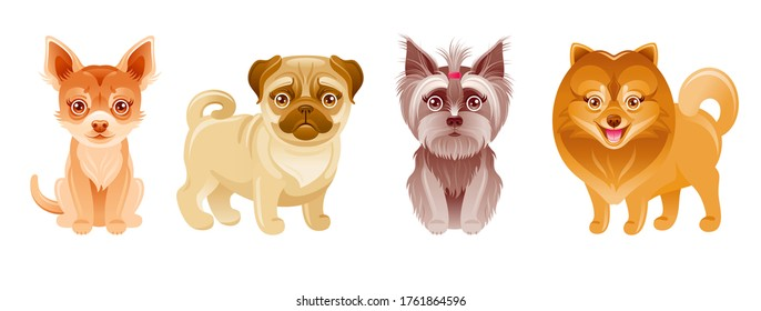 Dogs set. Vector puppy. Cartoon pets. Cute icon with happy Pug, Chihuahua, Yorkie Terrier, Pomeranian. Small breed collection. Funny animal illustration. Cute dogs collection