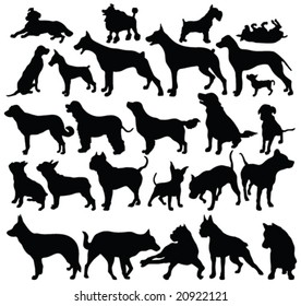 dogs silhouettes - vector