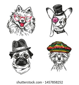 Dogs with various accessories. Chihuahua, pug, Yorkshire terrier and pomeranian dog. Dogs in a pilot's helmet, a rastaman hat and glasses. Set of vector images.