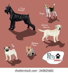 Dogs.Vector illustration set.
