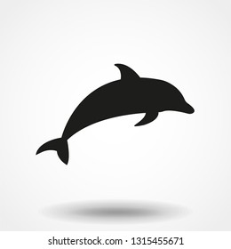 Dolphin aquatic mammal vector icon for animal apps and websites