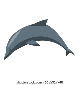 Dolphin icon. Isometric of dolphin vector icon for web design isolated on white background