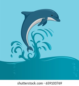 The dolphin jumping