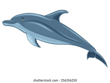 Dolphin, sketch on white background.