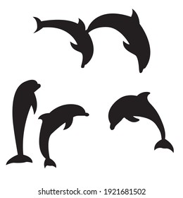 Dolphins on white background vector illustration.