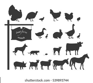 Domestic animals and birds. Black silhouettes on white background.
