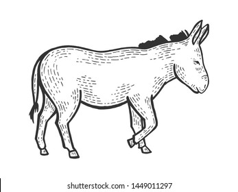 Donkey animal on tree sketch engraving vector illustration. Scratch board style imitation. Black and white hand drawn image.
