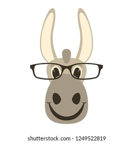donkey face in glasses, vector illustration front view