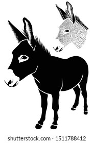 Donkey. Isolated on white background. Head of agricultural animal. Front view picture. Illustrations of cute farm animal. Abstract drawing of animal of livestock. Logo. Icon. Sketch. Sticker. - Vector
