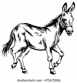 mule drawing images stock photos vectors shutterstock