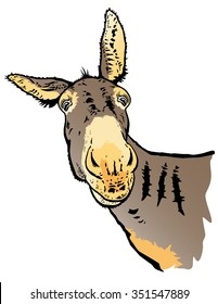 Donkey vector from photo.