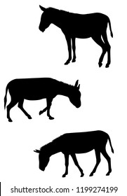 donkeys silhouettes set - vector