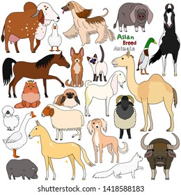 doodle of Asian breed domestic animals