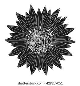 Doodle black flower isolated on white background. Vector illustration