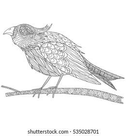 Doodle coloring book for adult with bird on tree branch. Bird with a crest.
