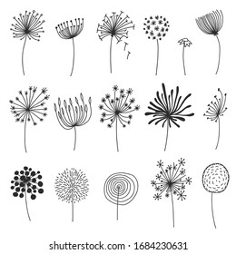 Doodle dandelion set. Hand drawn blowballs or flowers with fluffy seeds, floral silhouettes design elements